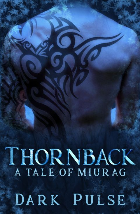 Naked back of muscular man, half-covered with tribal tattoos, with a blue background and white frost